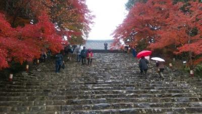 スマート珈琲から始まる京都二日目。洛西の奥深き山あいの神護寺・高山寺を訪ねて@2016京都