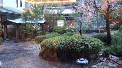 山代温泉 瑠璃光 星の棟に泊まる 部屋の紹介