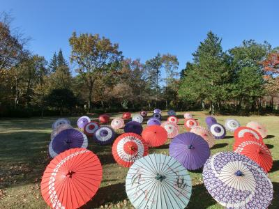 昭和記念公園で紅葉狩り♪~2020~