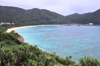 渡嘉敷島のケラマブルーを初見学