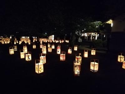 松江城のライトアップ「松江水燈路」