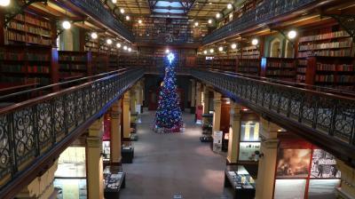 州立図書館のクリスマスツリー