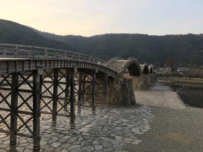 岩国にて錦帯橋とシロヘビ見物