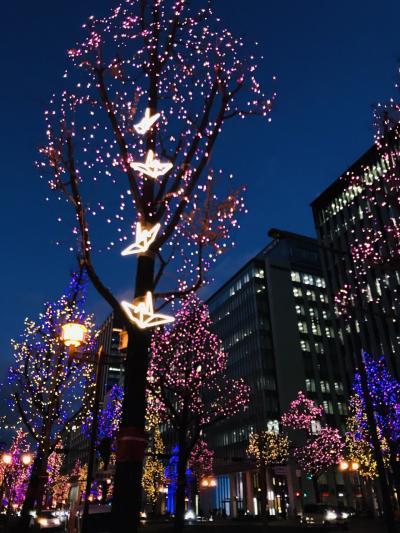 2020 素敵なクリスマスプレゼント☆彡 大阪インフィオラータとロンドンナショナルギャラリー展に行ってみた♪