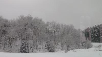 初冬コトコト揺られる旅 郡山~会津若松~喜多方