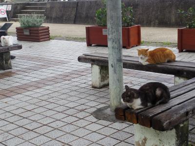 GoToで初めての沖縄へ 雨の那覇ひとり散歩(前編)