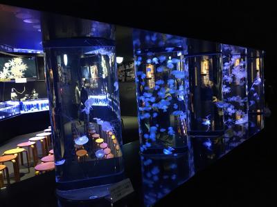 2泊3日でレンタカーを使い晩秋の山形県を巡る/日本海に面した加茂水族館で優雅に水中を舞うクラゲたちを鑑賞