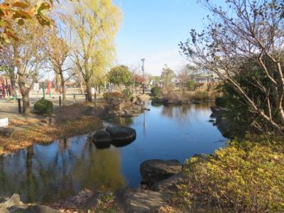 東京・綾瀬から新葛飾橋を渡り野菊の小道を歩いてじゅん菜池緑地で休憩をして市川・本八幡へ