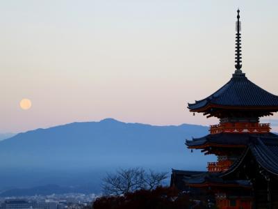 紅葉散る凛とした佇まいの寺社で平安を祈る旅(1)夜行バスで到着後、8か所の寺社を巡り歩き倒した京都1日目