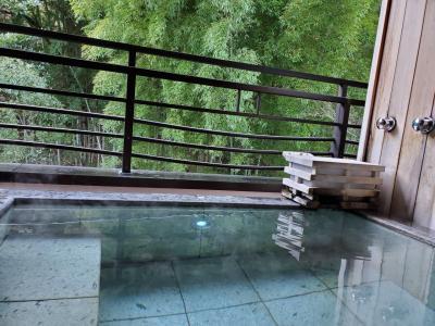 🍃箱根湯本 10種の源泉湯めぐりと創作懐石🍃①館内・お部屋