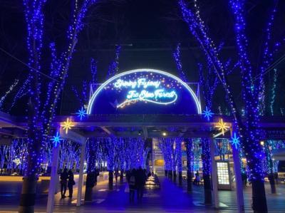埼玉・さいたま新都心のイルミネーション2020~けやきひろばとコクーン新都心~