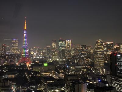 2020年12月 閉館間近 世界貿易センタービル展望台で夜景観賞