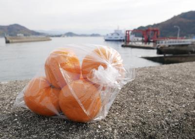 愛媛松山なら道後温泉浸かり、みかんの興居島から三津浜港の渡し舟に乗る松山街歩き編