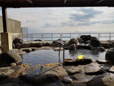 伊豆温泉はしご&青春18きっぷで身延線