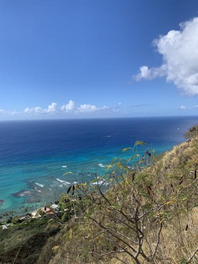 頑張ってハワイ3 デュークスの朝食とダイヤモンドヘッド登山