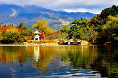 2020紅葉 三島池と清滝寺徳源院の紅葉(12)