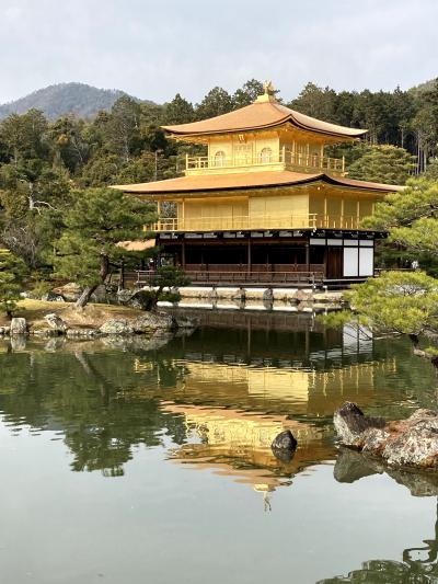 静かな京都は今だけ【屋根工事完了直後の金閣寺・龍安寺】
