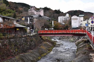紅葉の修善寺を散歩しました。