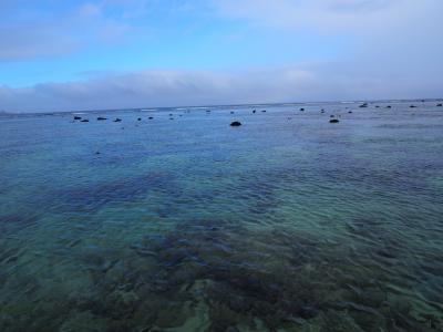 2020 3泊4日初めての石垣島は曇り空④もう半日、石垣島ドライブで見た青い海