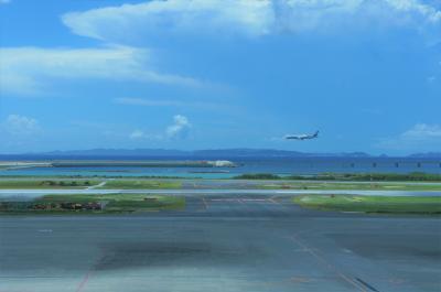 2020年8月 GOTOで沖縄1泊2日 飛行機が欠航振替えで本当に弾丸だけど沖縄料理を満喫してきました