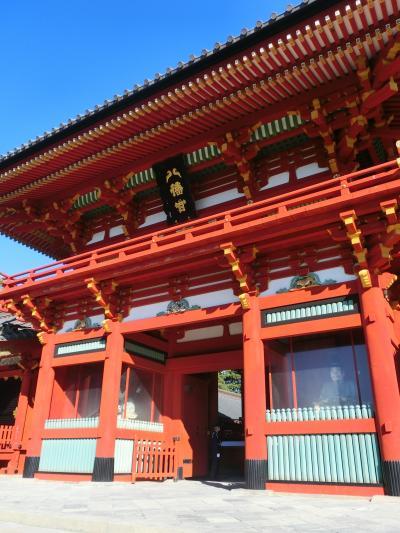 江ノ電や湘南モノレールにも乗った 鎌倉と湘南観光   ☆ 帰りの新幹線に遅れそうになり冷や汗をかく