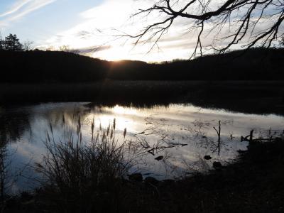 12月の伊豆の動物園3園再訪2泊2日半(2)伊豆一碧湖レイクサイドテラスでコンドミニアムタイプの3LDKのホテルステイと冬朝の一碧湖畔の散策
