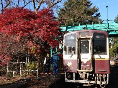 紅葉のわたらせ  普通列車の旅