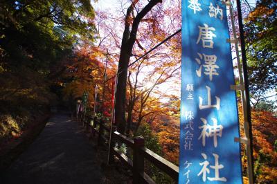 曳舟発。片道1000円以下で行く栃木県佐野市