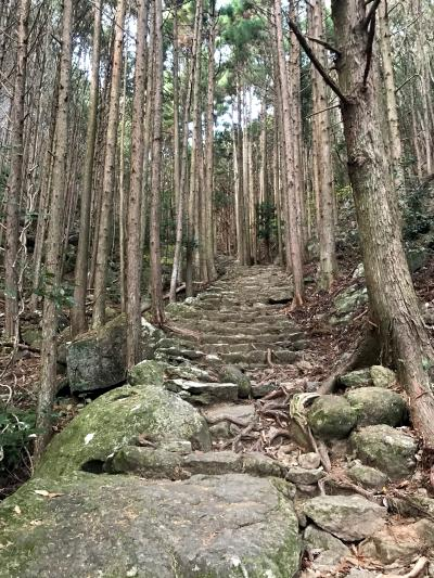 三重県南端・和歌山県の自然~野趣溢れ荒々しい美しさ~①松本峠(熊野古道)
