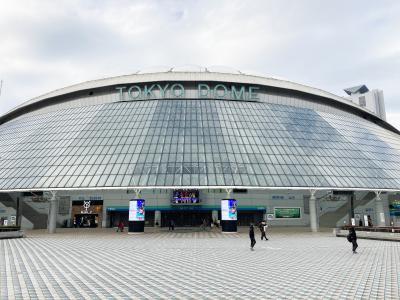 東京フリーきっぷ 都内未踏路線の旅