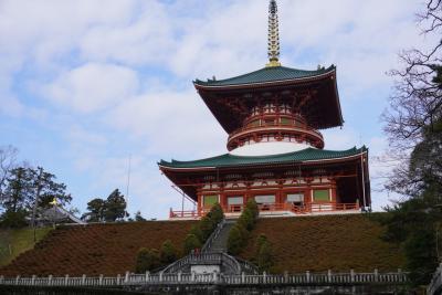 10ヶ月ぶりに成田空港行って、成田山参拝してきました。