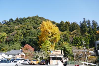 ゆったり旅 奈良の大和路紅葉めぐりバスツアー(3)