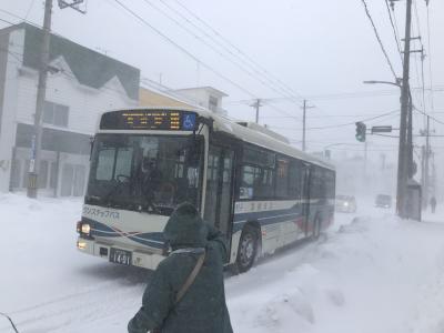 どこかにマイルで行く北海道【密を避ける旅】留萌から宗谷そして上川へ(1日目暴風雪のオロロンライン)
