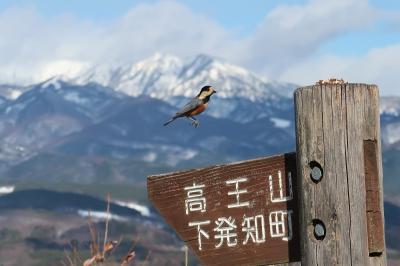 新春☆大地の頂に立ってみる