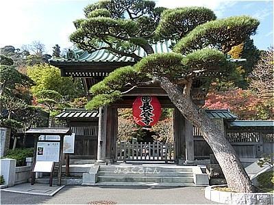 3年半ぶりの鎌倉・長谷寺