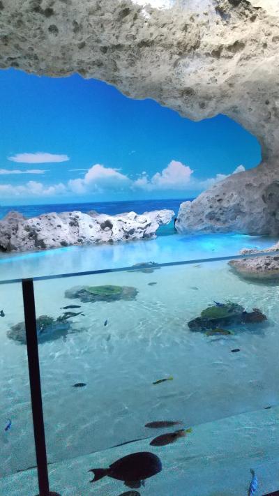 子連れ沖縄旅行② 買い物&ハイテク水族館