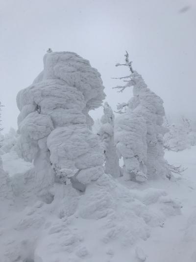 蔵王スキー旅行【2】蔵王国際スキー場、三五郎小屋、つるや、山形酒のミュージアム
