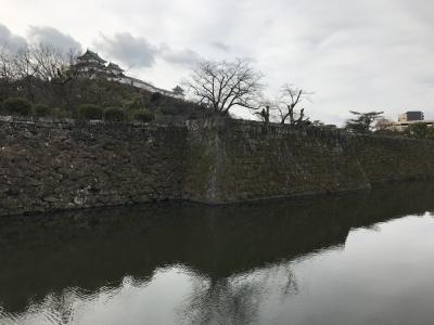 和歌山城と廃線跡と関西最強の花山温泉へ:青春18きっぷの旅(2021年始)、大阪発日帰り