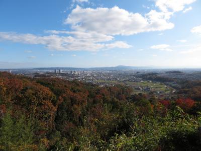 河内・摂津 三好長慶の城を訪ねて。