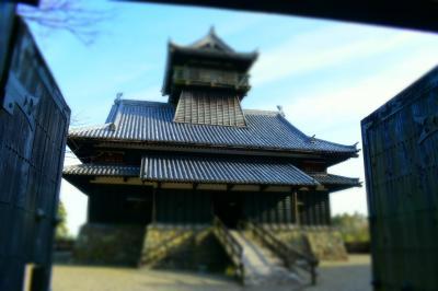 照葉大吊橋を渡る。綾城から見下ろす。高いところ大好き。
