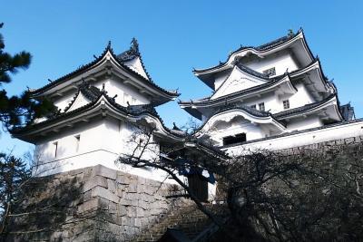 新春の伊賀上野城へ