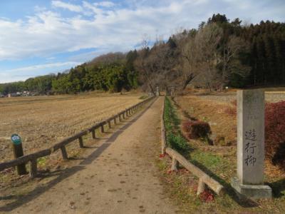 白河・南湖公園から那須町の境の明神・玉津島神社と遊行柳へ