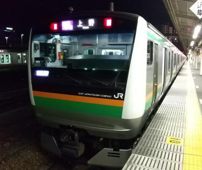 E JAN 2021  正月明けのプチ旅・・・・・⑧宇都宮線通勤快速惜別乗車