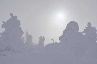 正月蔵王山チャレンジ2021