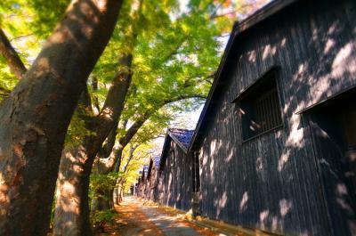 庄内の旅 紅葉の山居倉庫 湯野浜温泉游水亭いさごやで秋の馳走三昧