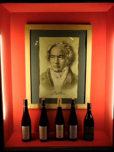 ウィーンの穴場ーベートーヴェンの家でワインを飲むー(2015年11月)