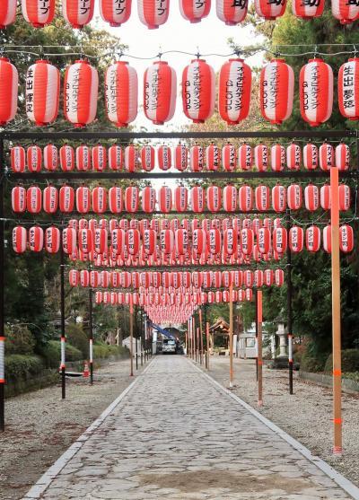 仙台24 大崎八幡宮a  鳥居-石段-参道 新年詣での仕度最中 ☆日本一の大門松も奉納され