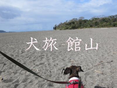 犬旅 ~館山・2020秋~