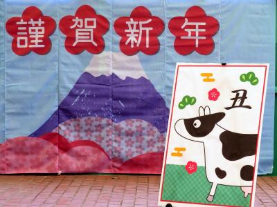 年始の埼玉こども動物自然公園2021(北園)なかよしコーナーからエコハウチュウまで2往復~ビスカチャとみやびちゃんハナビちゃんに会えた!
