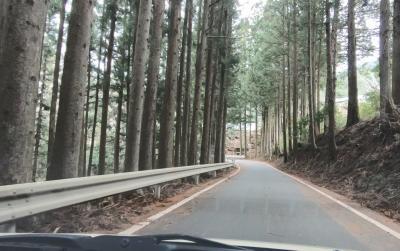 中央構造線の谷を走る(2/4)機織り渕、たっくい渕、二本杉の展望台